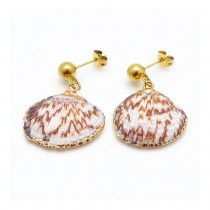 Natural Shell Earrings